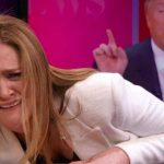 Samantha Bee Just Learned a Hard Lesson About Taking on Trump