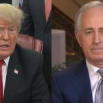 President Trump Shreds Republican Senator