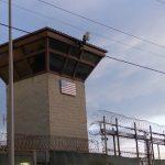 Senators Want Captured ISIS Fighters Sent to Guantanamo Bay