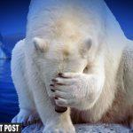 Debunking Decades of Climate Alarmism
