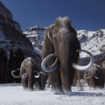 Cloning Mammoths May Be A Pipe Dream | Veterans Today