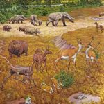 'Almost' Elephants Lived On The 'Texas Serengeti' | Veterans Today