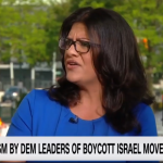 BDS About Criticizing the 'Racist Policy' of Israel