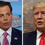 Scaramucci fires back at Trump on Twitter amid feud: 'You are losing your fastball'