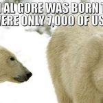 Polar Bear Study Contradicts Democrat Climate Change Claims