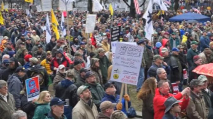 Image result for Conservatives, Militias Take Over DC In March For Gun Rights